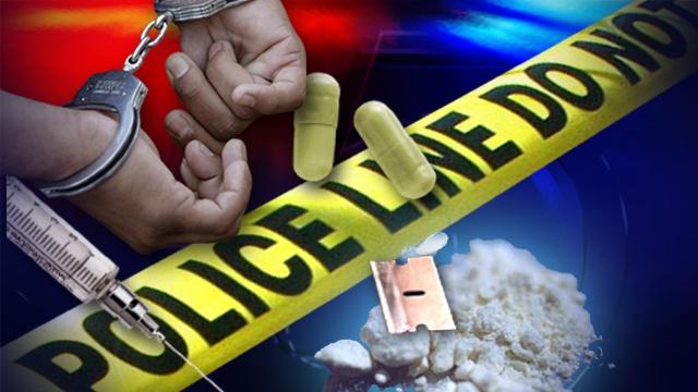包庇毒品犯罪分子罪